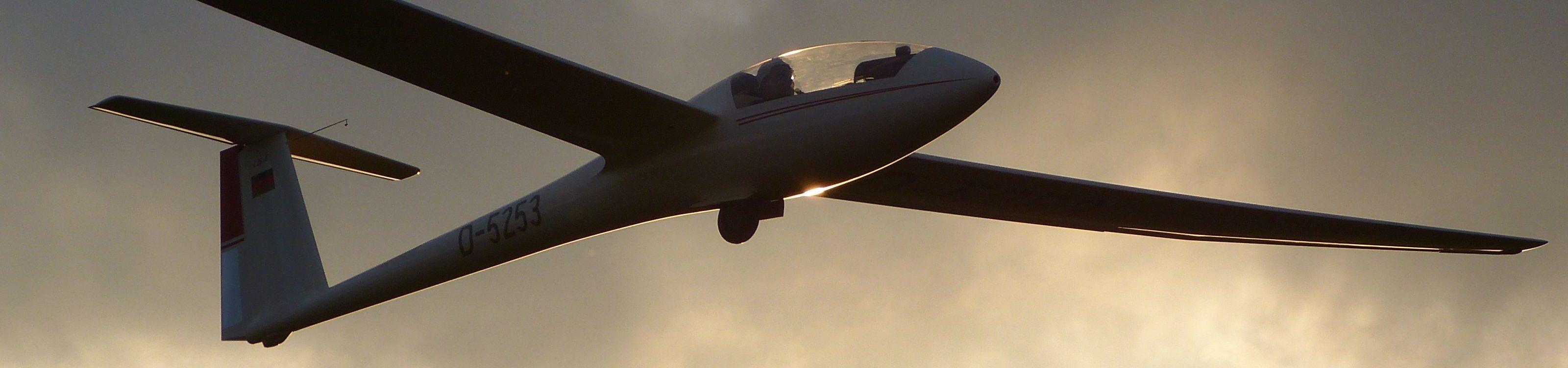 Ein einsitziges Segelflugzeug im Landeanflug