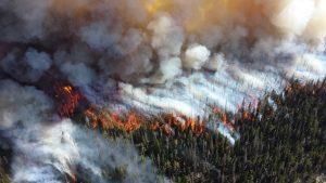 Waldbrand aus Sicht eines Flugzeuges